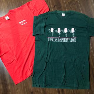 FRUIT OF THE LOOM   Tシャツ2枚 半袖 メンズXL(Tシャツ/カットソー(半袖/袖なし))