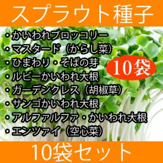 スプラウト種子まとめ買い10袋セット(野菜)