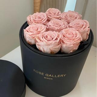 Francfranc - ローズギャラリー プリザーブドフラワー ローズ ボックス 薔薇 バラ