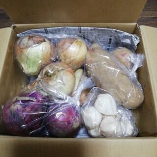 お野菜詰め合わせセット無農薬栽培(着払いです!)(野菜)
