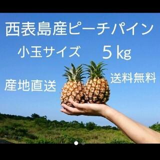 沖縄県西表島産ピーチパイン小玉サイズ約5㎏(10~13玉)(フルーツ)