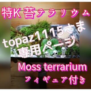 topaz1115さま専用♥特K苔テラリウムセット&オオカサゴケとミニ小鉢セット(その他)