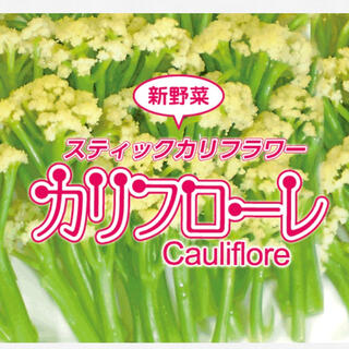 野菜のタネ カリフローレ(カリフラワー) イタリアの珍しい種 20個 (野菜)
