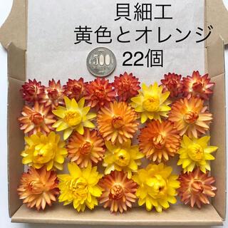 (5)貝細工 ヘリクリサム ドライフラワー 黄色とオレンジ 22個(ドライフラワー)