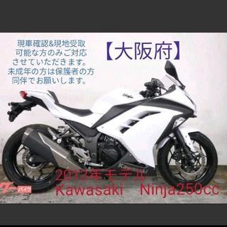 カワサキ(カワサキ)の【カワサキ Ninja250cc白】2013年モデル カスタム有(車体)