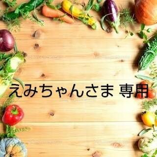 えみちゃんさま 専用 乾燥お野菜おまとめ(野菜)