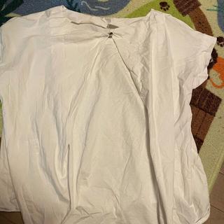 プラステ(PLST)の最終値下げ★プラステ★半袖カットソー★バックボタン★半袖Tシャツ(Tシャツ(半袖/袖なし))
