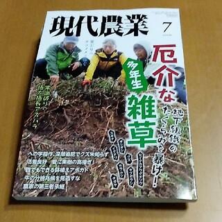 みー101 1057様専用 現代農業 2021年 07月号(専門誌)