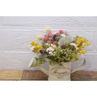 ミモザと千日紅、アナベルの花材セット(2)(ドライフラワー)