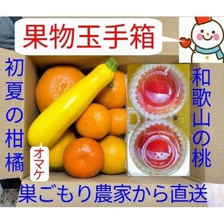 早生桃&初夏の柑橘♥今だけ特選果物玉手箱♥巣ごもり農家=雪だるまから(フルーツ)