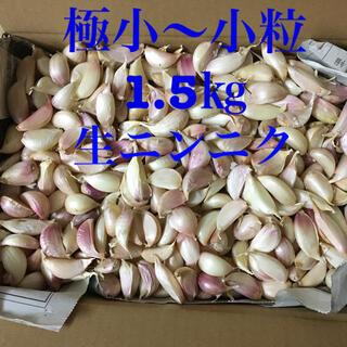 生ニンニク 極小〜小粒1.5㎏(野菜)