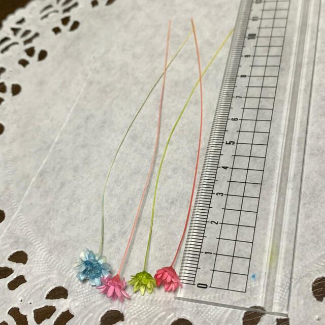 スターフラワーブロッサム150本 ハンドメイドのフラワー/ガーデン(ドライフラワー)の商品写真