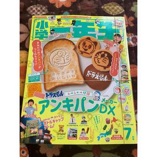 小学一年生 2021年 07月号(絵本/児童書)
