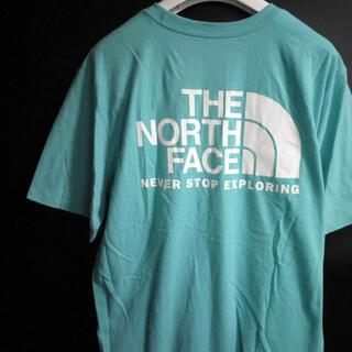 ザノースフェイス(THE NORTH FACE)の新品 THE NORTH FACE ノースフェイス【L】日本未発売 (Tシャツ/カットソー(半袖/袖なし))