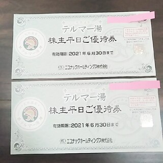 テルマー湯株主平日優待券2枚(その他)