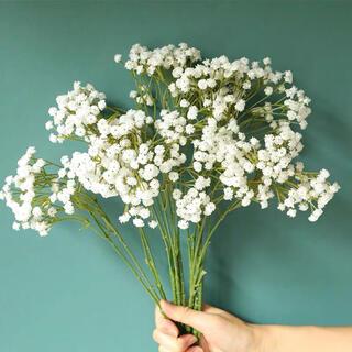 フラワー お花 花 装飾 自然 ナチュラル かすみ草 白 2本(ドライフラワー)
