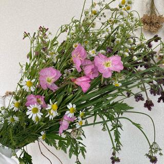 6月散歩で見つけた野の花スワッグ 2021年6/5収穫(ドライフラワー)