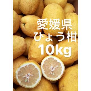 愛媛県産 ひょう柑 ひょうかん 10kg(フルーツ)
