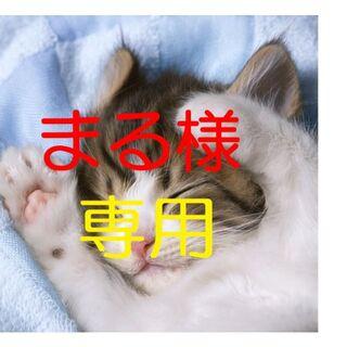 東芝 - 東芝T552 ノートパソコン i5 8GB SSD480GB カメラ ブルーレイ