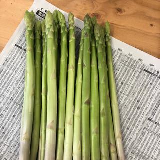 綺麗な形のアスパラ 太い 800g(野菜)