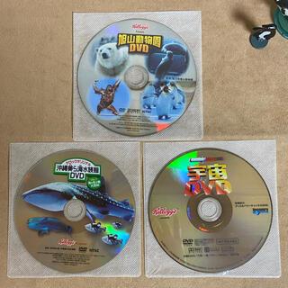 ケロッグ付録 DVD 3枚セット(キッズ/ファミリー)