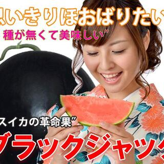 最高級・最高品質の種無しスイカ【ブラックジャック】(フルーツ)
