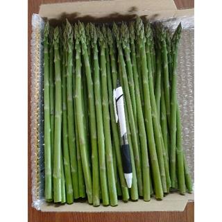細アスパラ 1kg(野菜)