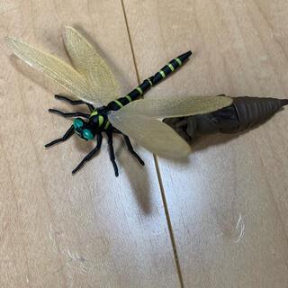 タカラトミーアーツ(T-ARTS)のオニヤンマ タカラトミーアーツ ガチャガチャ 昆虫の森 変身昆虫あらわる! (その他)