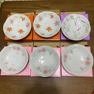 日糧 北海道の花絵皿 6枚 セット(食器)