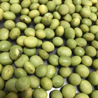 美味しい枝豆が作れる 秘伝豆の種 30粒(野菜)