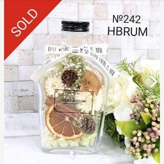 №242 ハーバリウム フルーツグリーンボトル HBRUM(ドライフラワー)