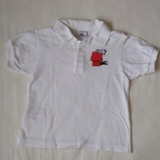 ラコステ(LACOSTE)のLACOSTE キッズポロシャツ(105-125)(Tシャツ/カットソー)