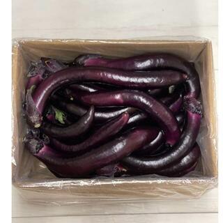 大長ナス 熊本県産 訳アリ 家庭用でも美味しい♪3キロ(野菜)