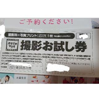 キタムラ(Kitamura)のスタジオマリオ無料お試し券(税込価格 5,280円分)(その他)