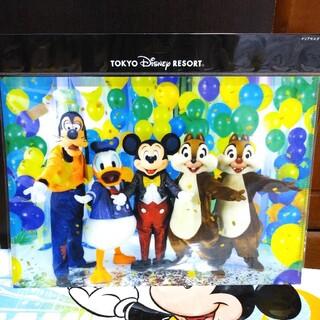 ディズニー(Disney)のイマジニングザマジック Imagining the Magic クリアホルダー(キャラクターグッズ)