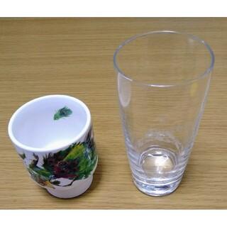 キリン(キリン)の杏露酒とキリンビール グラスセット(グラス/カップ)