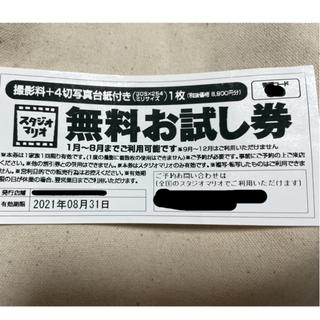 キタムラ(Kitamura)のスタジオマリオ 希少!無料お試し券(その他)