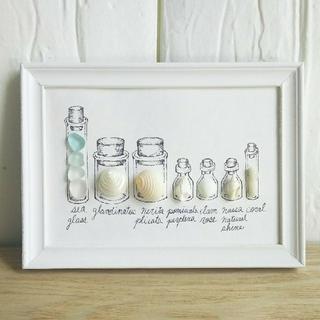 小瓶の世界*貝殻標本☆シーグラスアート(アート/写真)