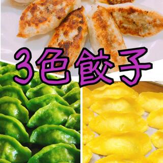 無添加3色餃子 白・緑・黄色 野菜の色 無着色 皮もちもち中ジューシー 綺麗(野菜)