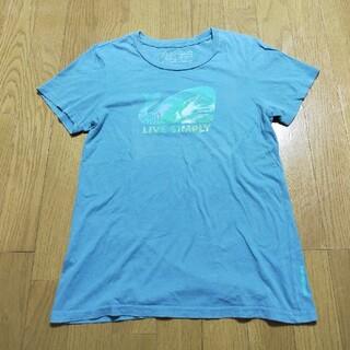 パタゴニア(patagonia)のパタゴニアのオーガニックコットンTシャツ(Tシャツ(半袖/袖なし))