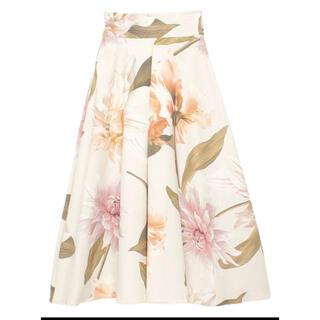 エイミーイストワール(eimy istoire)のエイミーイストワール スカート(ひざ丈スカート)