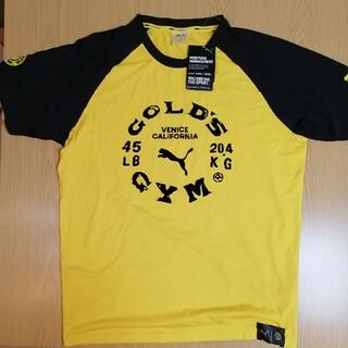 プーマ(PUMA)の【定価6050 プーマ 5196616】(M)ゴールドジム ラグラン Tシャツ (トレーニング用品)