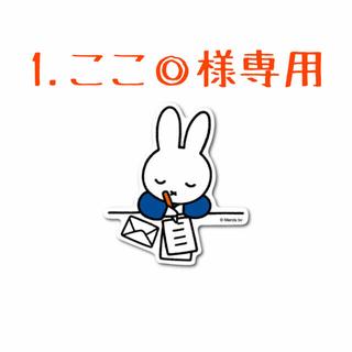 1.ここ◎様専用❣️ 第3回🎉韓国多肉植物販売会❣️(その他)