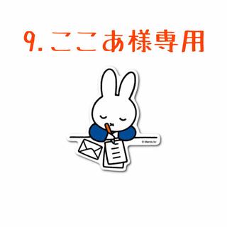 9.ここあ様専用❣️ 第3回🎉韓国多肉植物販売会❣️(その他)