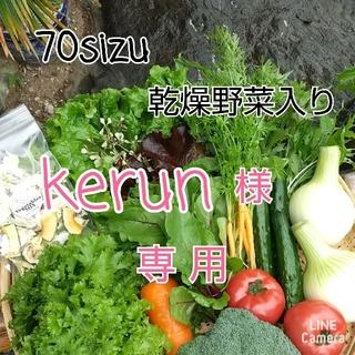 新鮮野菜【畑〜野菜直送便♪ギュギュッと乾燥野菜入り】70サイズ農薬不使用(野菜)