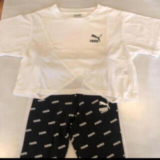 プーマ(PUMA)のPUMA(Tシャツ/カットソー)