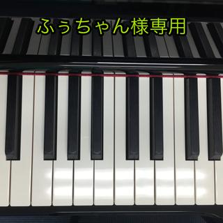 ふっちゃん様専用(ポピュラー)