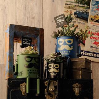 ダンディマンポットS 植木鉢 ガーデニング用品 ブリキポット 3個セット(プランター)