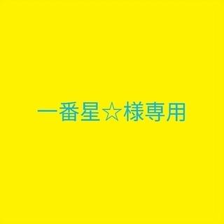 一番星☆様専用(その他)