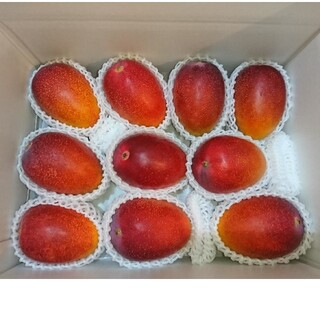 宮崎産完熟マンゴー 3.4kg(フルーツ)